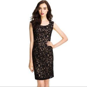 Adrianna Papell Lace Dress